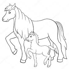 Paard En Veulen Dieren Kleurplaten Paarden En Kleurplaten