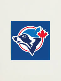 Toronto Blue Jays Raccoon Parody Photographic Print By Moreawesometees Redbubble