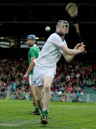 Politics has won again' - Limerick hurling goalie's Mum is not a ...
