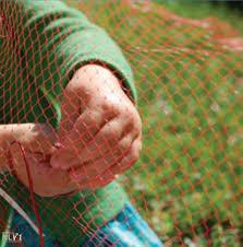 Fence Weaving Nli