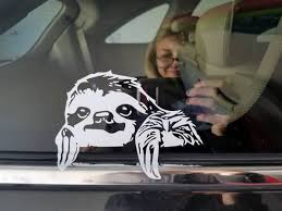 Peeking Sloth Decal Etsy