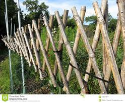 Bamboo Garden Fence Stock Image Image Of September 100613673