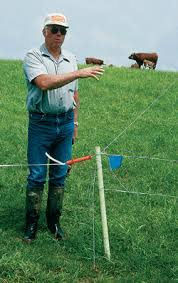 Profitable Pastures Good Fences Make Good Pastures Nrcs Iowa