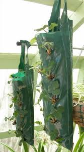 diy hanging grow bags for your plants
