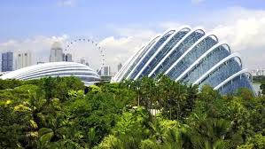 aerial view of cloud forest dome and