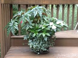 planters tropical landscaping ideas