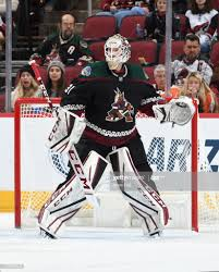 Adin Hill of the Arizona Coyotes gets ready to make a save against...  ニュース写真 - Getty Images