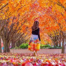Autumn (toamna)  Images?q=tbn%3AANd9GcSZRMTviFKaVC1IkA7EGqBzCpyCBxqzX-n2XDkmM0Kk-ZVfzUUp