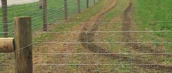 Woven Wire Fence Petty Farms