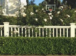 Balcony Fence Ideas Natural Idea For Front Yard With Iceberg French Chateaux Home Elements And Style Cover Persian Wooden Vector Privacy Fences Amazon Crismatec Com