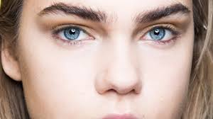 can eyebrows grow back how to regrow