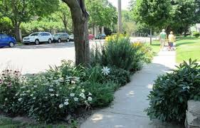 front yard gardens go beyond containers