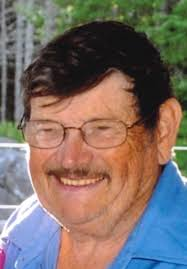Obituary of Louis Wesley Robinson | Ettinger Funeral Home - Shubena...