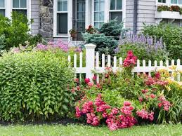 Landscaping With Dogs In Mind Tips For Canine Owners