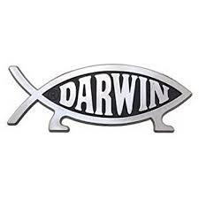 Amazon Com Darwin Fish Car Emblem Automotive