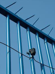 Perimeter Security Jacksons Fencing