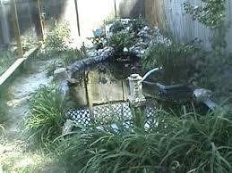 Turtle Pond Fence Youtube