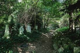 Abney Park Cemetery - Emil Eve Architects