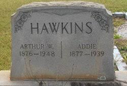 "Mary Adeline ""Addie"" Williams Hawkins (1877-1939) - Find A Grave Memorial"