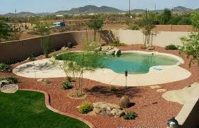 Pool Area Landscaping The Best Plants For Swimming Around Inground Pools Above Ground And Ideas Small Building Texas Under Screen Crismatec Com