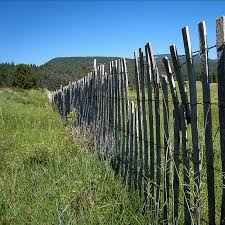Who Pays For Fence Replacement Networx