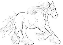 Paarden Kleurplaat Dieren Kleurplaat Animaatjes Nl