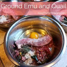 easy raw dog food recipe emu and quail