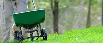 lawn mowing or a gardening business