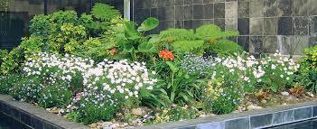 home eden landscaping
