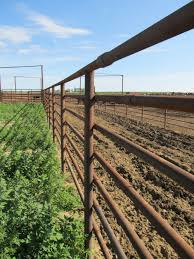 6 Tips For Building A Good Corral Fence Aurochs Consulting