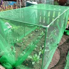 Ready Stock Greenhouse Anti Insect Fly Mesh Net Garden Plant Flower Protection Cover Netting Shopee Philippines
