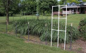 Decorate Your Fence With A Custom Trellis From Pvc Pipe Goodwill Southern Piedmont