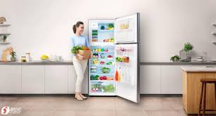 Nên mua tủ lạnh hãng nào tốt, giá rẻ và tiết kiệm điện nhất 2019?