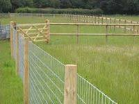 10 Sheep Fence Ideas Dog Fence Fence Backyard Fences