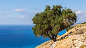 kefalonia 4k wallpapers for your