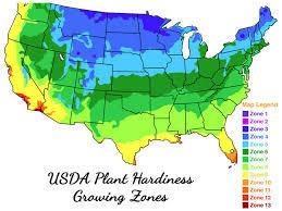usda plant hardiness zone map for palm