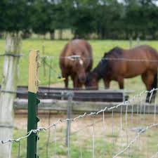 Farmgard 72 In X 100 Ft Horse Fence With Galvanized Steel Class 1 Coating 348312b The Home Depot