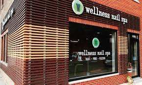 wellness nail spa in lincoln park