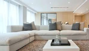 big fluffy living room rugs large