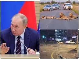 Russian President, Vladimir Putin ...
