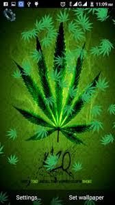 weed rasta live wallpaper