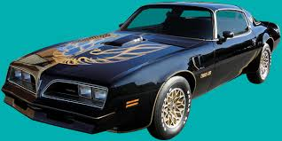 1977 78 Trans Am Decals And Stripe Kit
