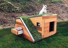 eco friendly dog house es with green