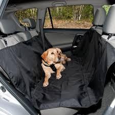 dog car accessories dog car