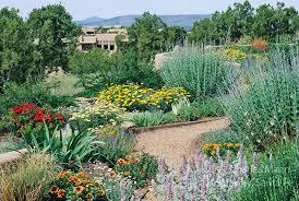 xeriscape garden design by susan blake