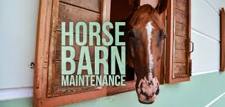 9 barn maintenance tips for first time