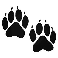 Bear Tracks Decal Sticker