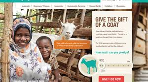 what to try now heifer international