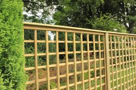 Different Trellis Types Best Trellis Types Jacksons Fencing
