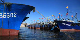 No fish, lower subsidies – where next for China's coastal fishers?